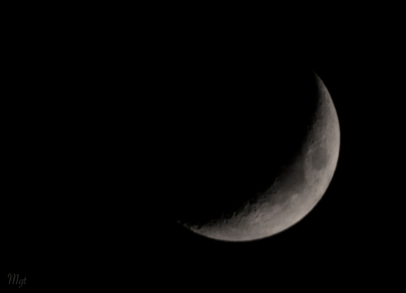 Moon ©Mgt
