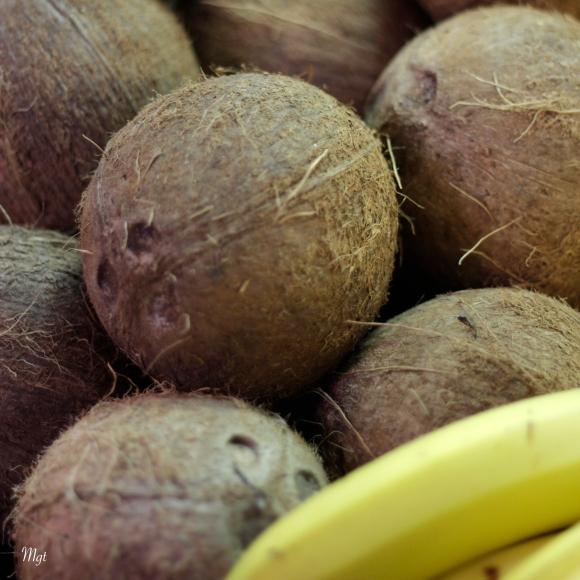 Cocobanana  ©Mgt