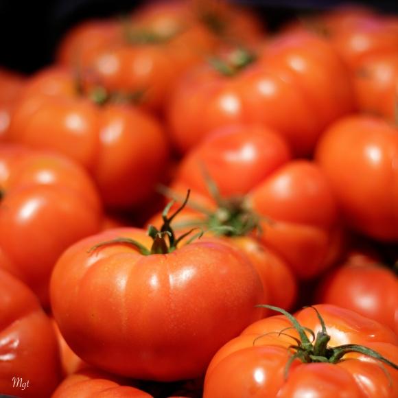 Tomatas  ©Mgt